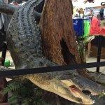 Stuffed Alligator at Roland Martin Marina Gift Shop next to the Tiki Bar