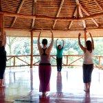 Foto de Amatierra Retreat and Wellness Center