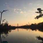 Photo de Bayou Adventure