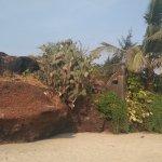 Mandrem Beach Foto