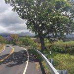 Gorgeous spring ride down Haleakala