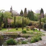 Photo of Glengarriff Bamboo Park