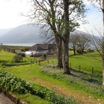 We can walk across the field opposite the guest house to have a closer view of the loch.