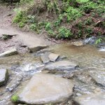 Crossing this wasn't easy. Lots of rain caused this to cover the trail