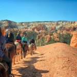Two hour trail ride into Bryce