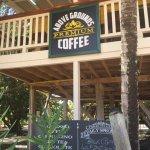 Treehouse coffee!