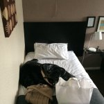 Foto de The Chedburgh Hotel