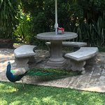 mesas del jardin