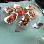 The oysters were an excellent appetizer