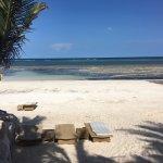 Bilde fra Swahili Beach Resort