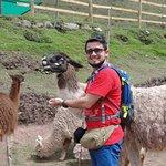 Photo of Santuario Animal de Cochahuasi