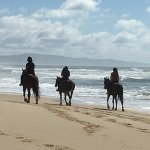 Beautiful location private ride on the beach