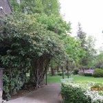 Conrad Mansion gardens