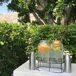 Loved the fresh fruit water by the pool. So refreshing and always cold!