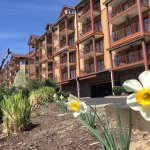 Spring at the Appleview River Resort