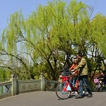 Cyclists enjoying their way on one of the six bridges