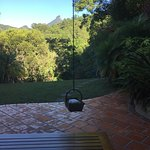 Amazing Wollumbin Palms Retreat at Mt Warning Foto