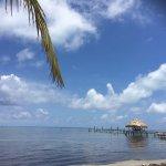 Barefoot Beach Belize Foto