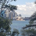 View of Opera House from Cremorne Point