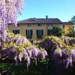 Photo of Hotel Villa Carona