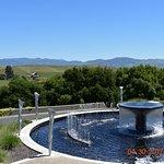 Photo de Artesa Vineyards & Winery