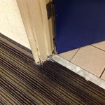 Filthy, worn carpet into the bathroom & rotted door frame
