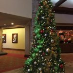 Decorated tree in the lobby