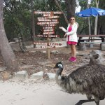 Around the park (and an Emu!)