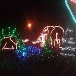 River of lights 2016