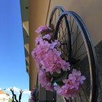 Dettagli decorativi per il 100° Giro D'Italia