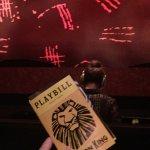 Photo de The Lion King