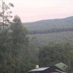 Foto de Tsanana Log Cabins & Mulberry Lane Suites
