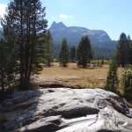 Photo of Tuolumne Meadows