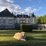 Photo de Château de Bourron
