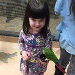 Feeding the birds in the aviary!