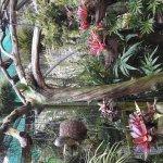 Les Jardins de Valombreuse Parc Floral et de loisirs
