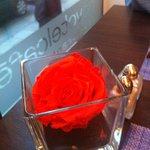 déco :rose rouge