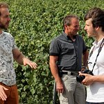 Visit to the Marne Valley vineyards