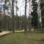 Photo of Dzintari Forest Park