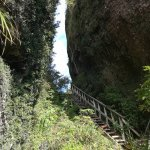 Aotea Track