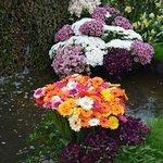 Foto de Floralia - Spring Flower Show