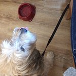 Foto de Darnley Coffee House