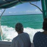Photo de Dolphin Watch