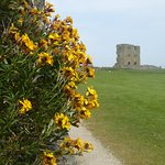 Scarborough Castle Foto