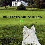 Coolclogher House A True Irish Gem