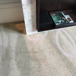 stains all over the rooms carpet