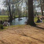 A beautiful pond that you can picnic by