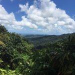 The El Yunque Rain Forest
