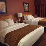 Foto de Comfort Inn & Suites Hotel and Conference Center
