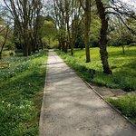 A nice walking area